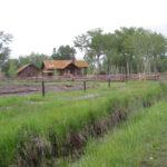 Cabin site